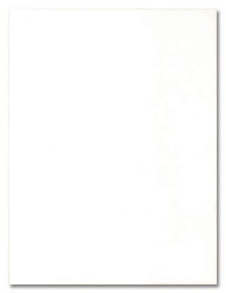 Wandfliese günstig weiß matt 25x33 FBM4856 bei Fliesenprofi kaufen