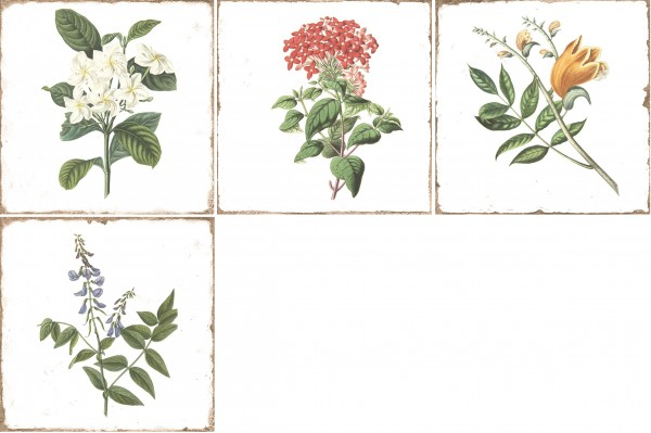 Wandfliese historisch Vintage Shabby Dekor Blumen 15x15