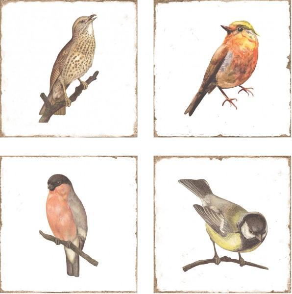 """Wandfliese antik Vintage Vögel glänzend 15x15 """"Forli Birds"""""""