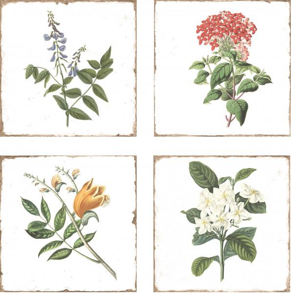 """Wandfliese Retro Dekor Vintage Landhaus antik Shabby Kräuter Blumen glänzend """"Forli Flowers"""""""