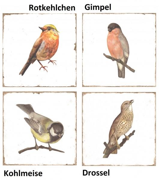 "Wandfliese antik Vintage Shabby Vögel glänzend 15x15 ""Forli Birds"""
